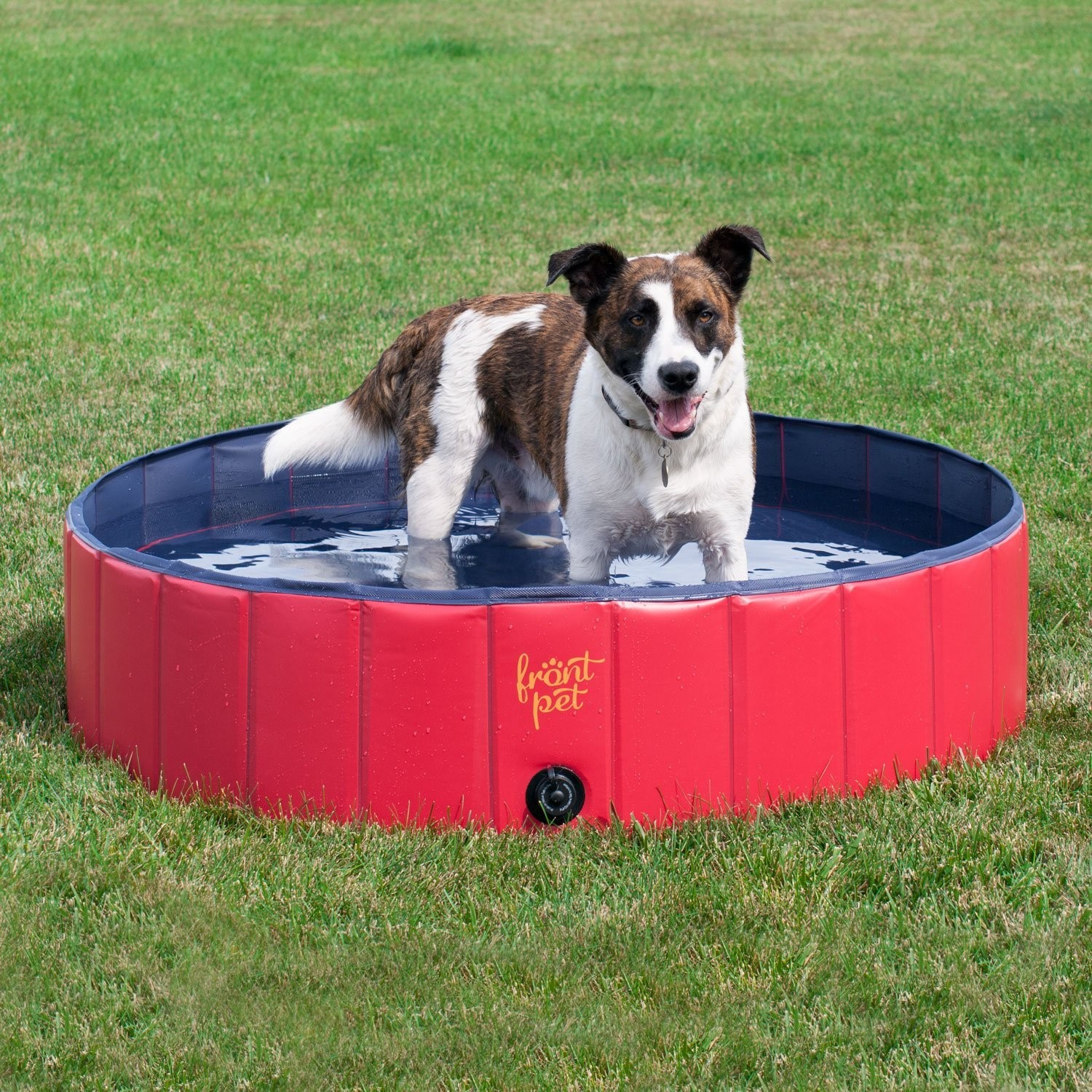 Keeping Dogs Cool In Summer Dog Pool Foldable