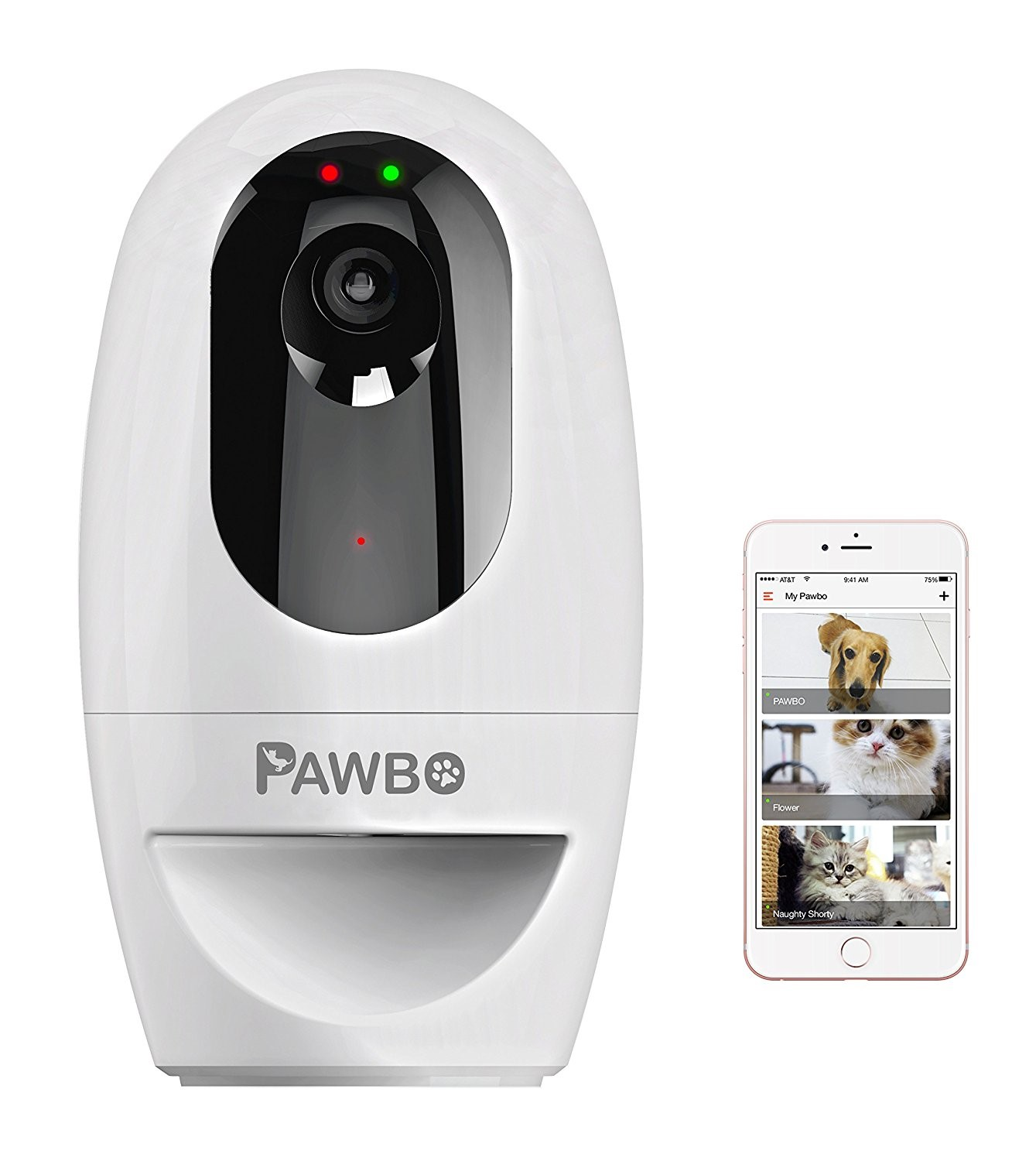 Pawbo dog camera treat dispenser
