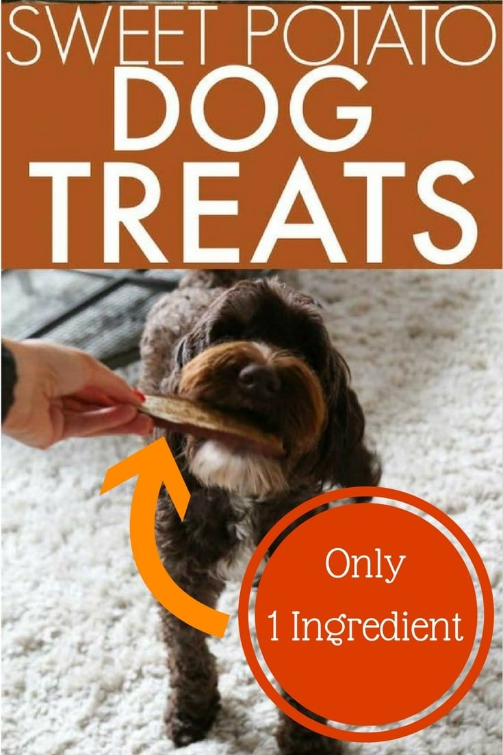 Sweet Potato Treats for Dogs Recipe 1