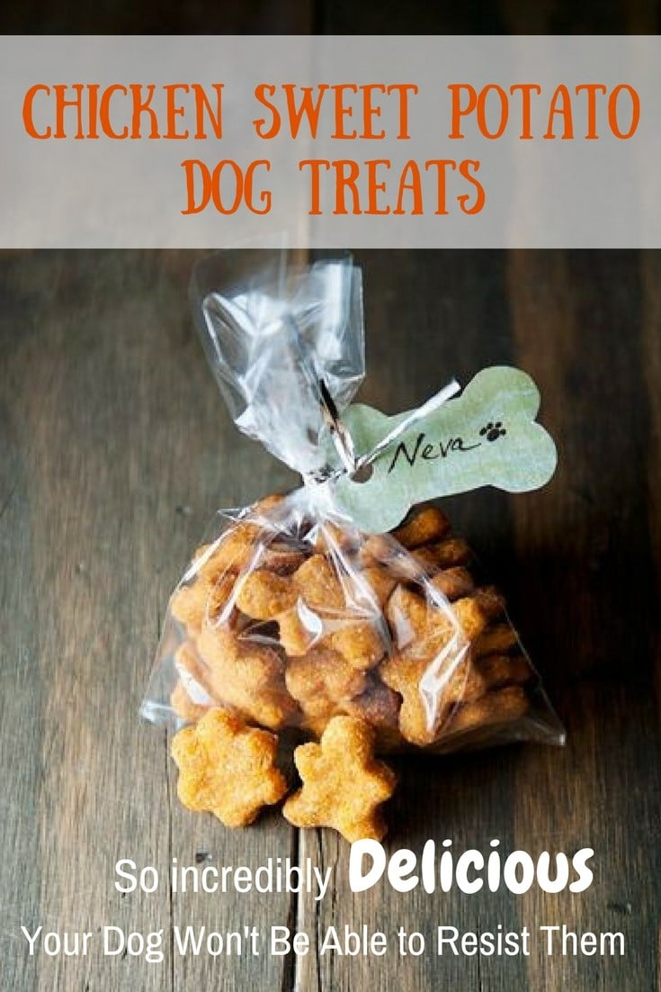 Sweet Potato Treats for Dogs Recipe 2