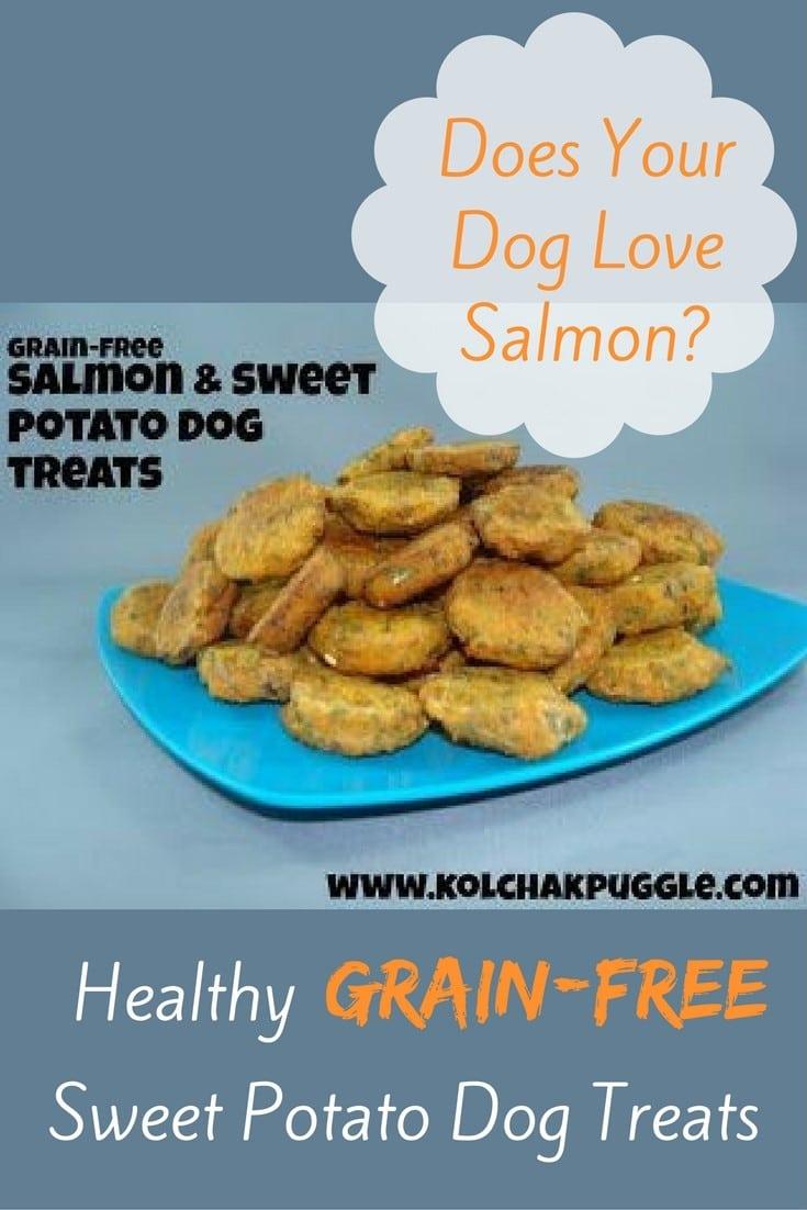 Grain Free Dog Treats Recipe Sweet Potato