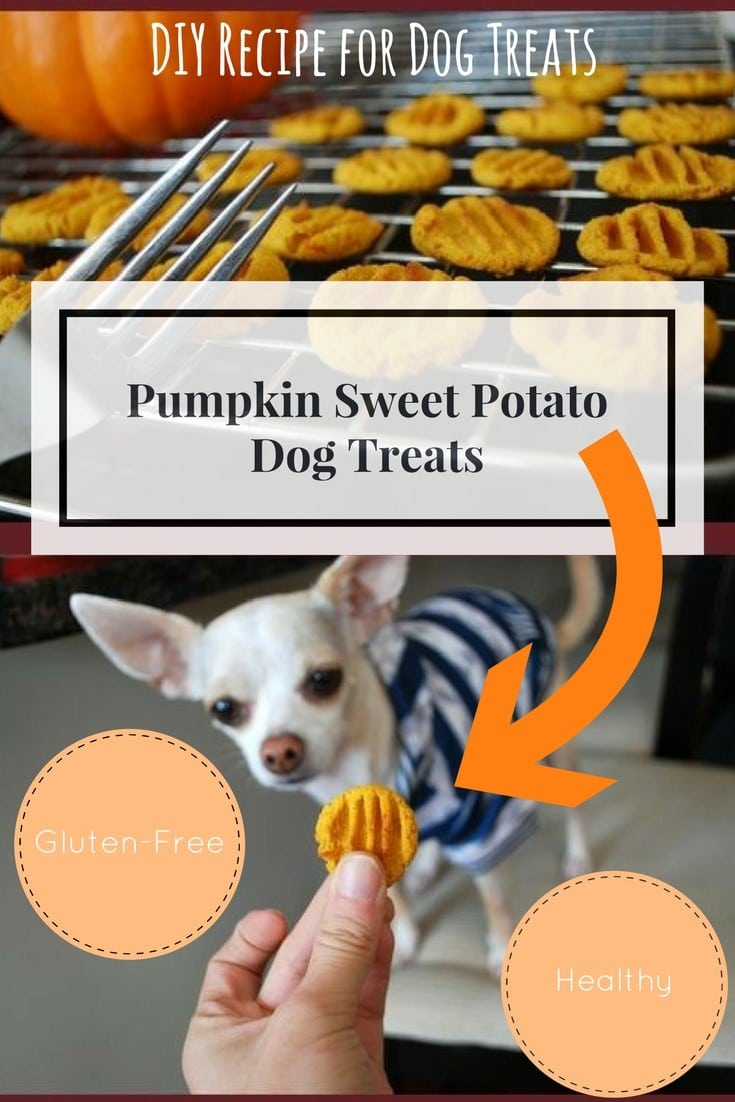 Bake Sweet Potato For Dog Treat