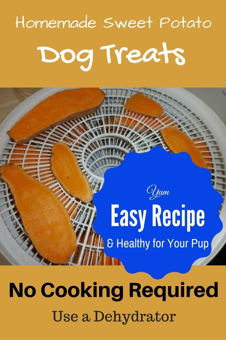 Sweet Potato Treats for Dogs Recipe 7