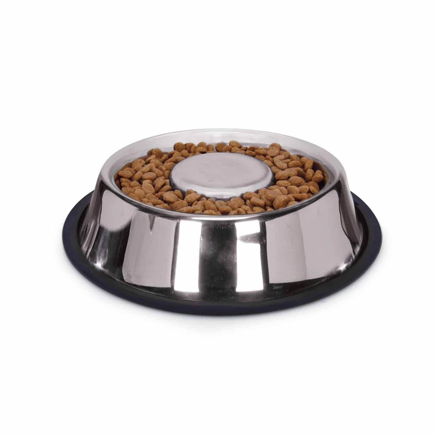 Best Slow Feeder Dog Bowl stainless