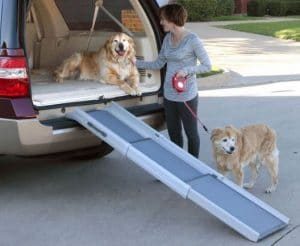 Best Dog Ramp for Car