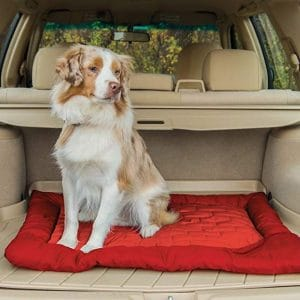 Car Dog Bed 2