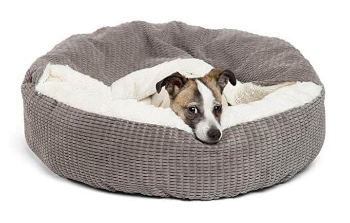 Machine Washable Dog Beds 1