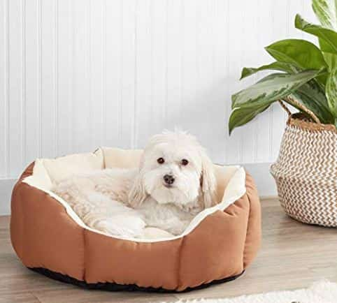 Machine Washable Dog Beds 5