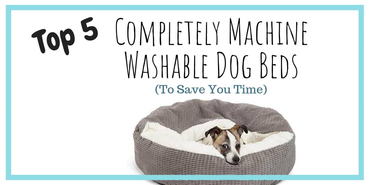 Machine Washable Dog Beds
