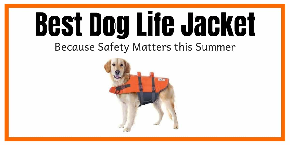 Best Dog Life Jacket for Small or Large Dogs