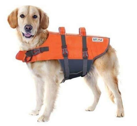 Best Dog Life Jacket for going near water this summer.