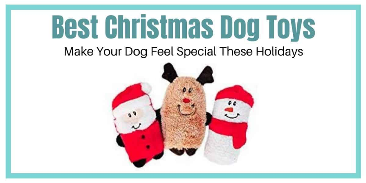 Best Christmas Dog Toys to Make Your Pooch Feel Special these Holidays